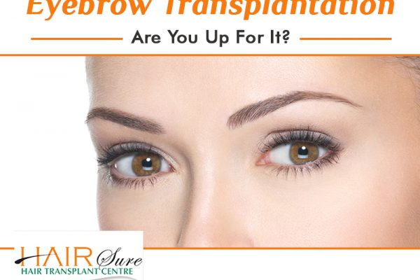 Best Eyebrow Transplantation in Hyderabad, best Hair dermatologist near me
