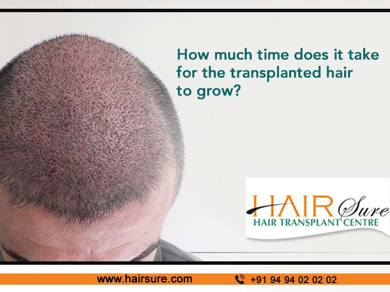 Make a call to Hair Sure to know how long does it take for hair to grow after a hair transplant, hair care center near Habsiguda